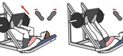 Alternatives au leg press machine