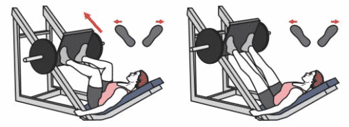 Alternatives au leg press machine